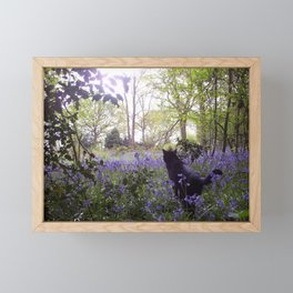 Hidden Paradise Framed Mini Art Print