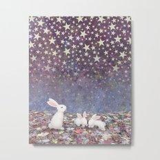 bunnies under the stars Metal Print