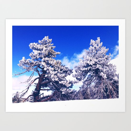 Snow covered trees Art Print