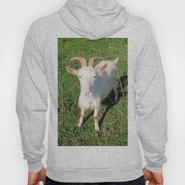 Billy 'The Goat' Hoody