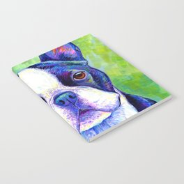 Colorful Boston Terrier Dog Notebook