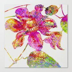 glittering clematis Canvas Print