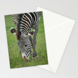 Grazing Zebra Stationery Cards