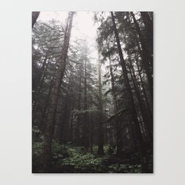 Foggy morning Canvas Print