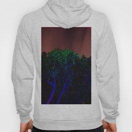 RGB 1 Hoody