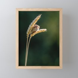 Harvest Time. Framed Mini Art Print