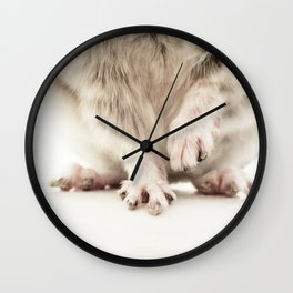 Chinchilla Hands = The Cutest Hands Wall Clock