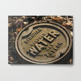 Central park gardner box Metal Print