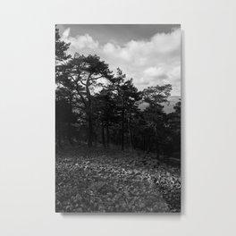 Rock River Metal Print