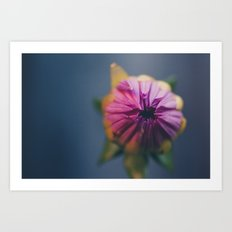 Ready to Bloom, in color Art Print