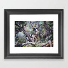 Goat on a Hill Framed Art Print