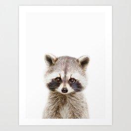 Baby Raccoon Portrait Art Print