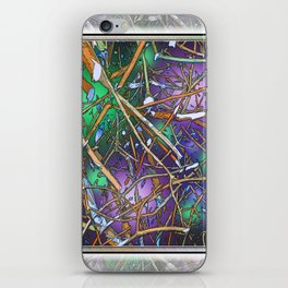 The Twiggs Theory of the Universe iPhone Skin