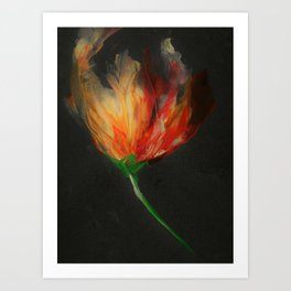 Blazing Glory Art Print