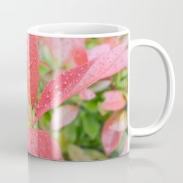 Fifth Month Photinia II Coffee Mug