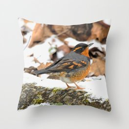 Male Varied Thrush Amid the Snow and Seed Throw Pillow