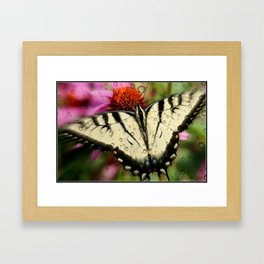 Butterfly and raindrops Framed Art Print
