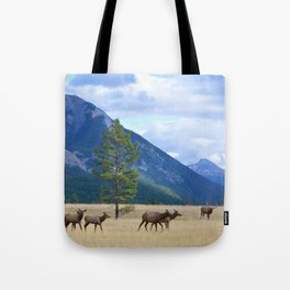 Bull Elk with his Harem Tote Bag