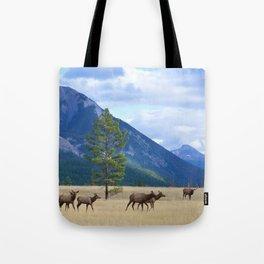 Bull Elk with his Harem Tote Bag