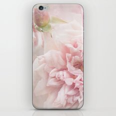 Softly Roses iPhone & iPod Skin