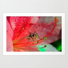 Buggy Bug!!! Art Print