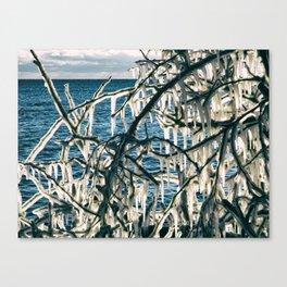 Icy Art Canvas Print