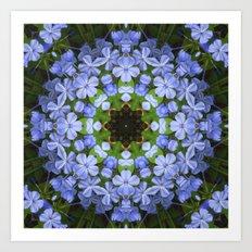 Blue Plumbago Kaleidoscope 11 Art Print