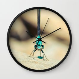 Can I Bug You Wall Clock