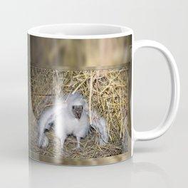 Baby Vulture Coffee Mug