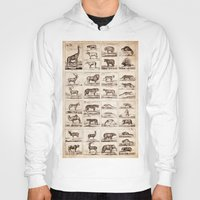 animals Hoodies featuring Animals by Le petit Archiviste