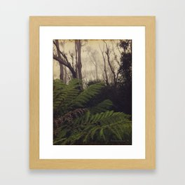Rainforest No.11 Framed Art Print