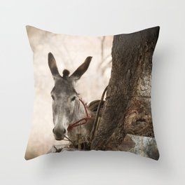 The curios donkey Throw Pillow