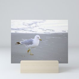 Sea Gull Stroll Mini Art Print