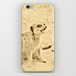 Vintage Animals - Meerkat iPhone Skin