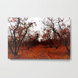 Colors of Autumn Metal Print
