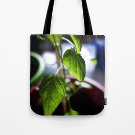 Sunlit Serrano Tote Bag