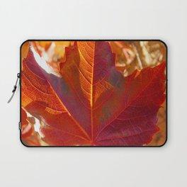 maple leaf. Autumn in Zamora. Spain Laptop Sleeve