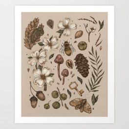 Nature Walks (Light Background) Art Print