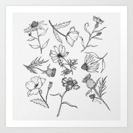 Wildflowers Art Print