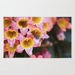 Tangerine Beauty Cross Vine with a Bumblebee Rug