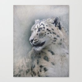 Snow Leopard profile Canvas Print