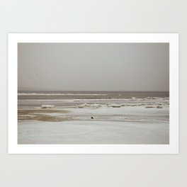 February's waves Art Print