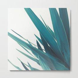 Yucca Leaves II Metal Print