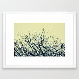 Winter Branches Framed Art Print