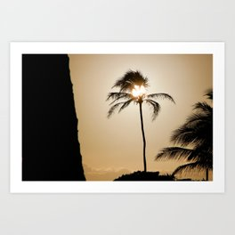 Palm Tree with Set Sail Champagne background - Western Australia Art Print