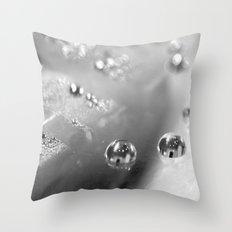 Two BW Throw Pillow