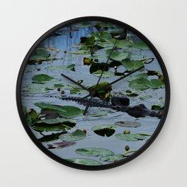 Florida Gator Amongst The Waterlilies Wall Clock
