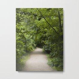 Leafy walk Metal Print