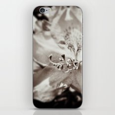 Sweet Seduction iPhone & iPod Skin