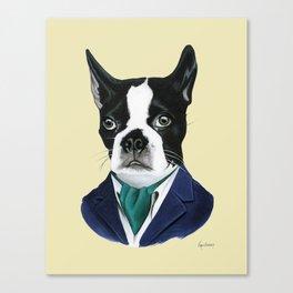 Boston Terrier Dog by Ryan Berkley Canvas Print